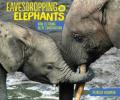 Eavesdropping elephants