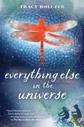 Everything else universe