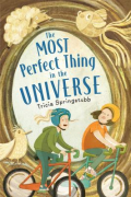 Most perfect universe